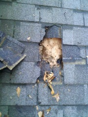Norcross's Best Gutter Cleaners' can replace rotted fascia and soffitt